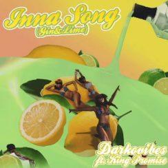 Darkovibes Inna Song Music Mp3 Download