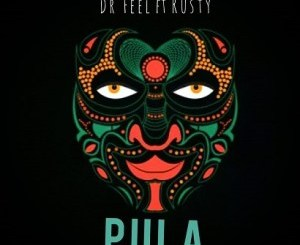 Dr Feel Pula Music Mp3 Download