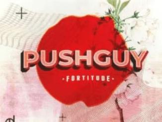 Pushguy Fortitude Ep Zip Download