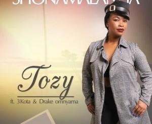 Tozy Shonamalanga Music Free Mp3 Download Extended Version Song feat Drake Omnyama & 3kota