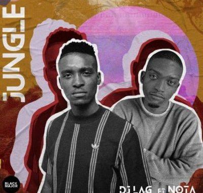 DJ Lag Jungle Mp3 Download