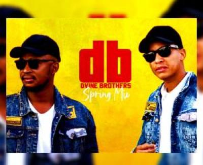 Dvine Brothers Spring Mix 2020 Mp3 Download