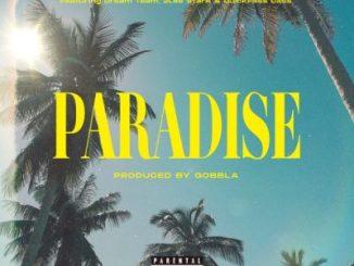 DJ Kaygo Paradise Download