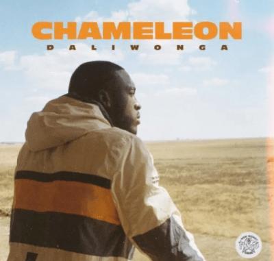 Daliwonga Crash Into Me Download