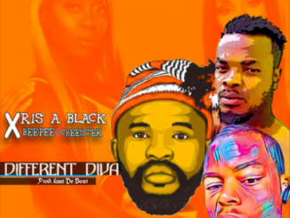 Xris A Black Different Diva Download