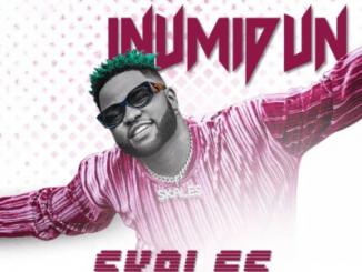 Skales Inumidun Download Mp3