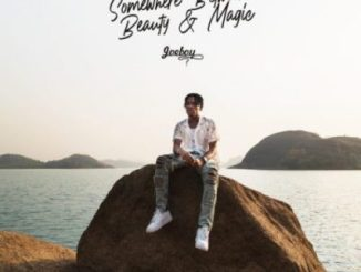 Joeboy Number One Mp3 Download