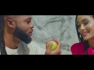Flavour Omo T'emi Video Download