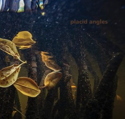 Placid Angles Touch the Earth Album Download