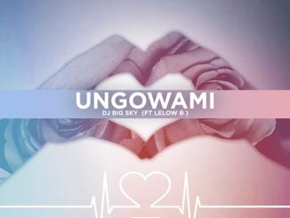 DJ Big Sky Ungowami Mp3 Download