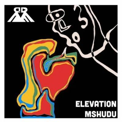 Mshudu Elevation EP Download