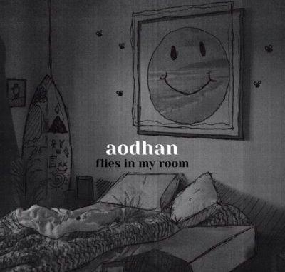 Aodhan Flies In My Room Album Download