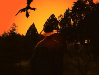 Nino Fresko Sonics Echoed By The Heart Of A Dragon Album Download