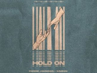 Pierre Johnson Hold On Mp3 Download