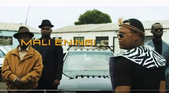 Big Zulu - Mali eningi