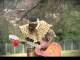 VIDEO: Utwalofu Namankentshane - Amathunzi mp4 download