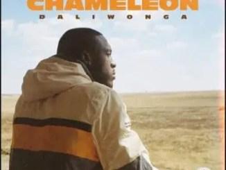 Daliwonga Chameleon Album