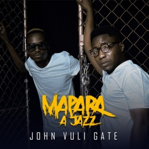 Download Mapara A Jazz Right Here Video