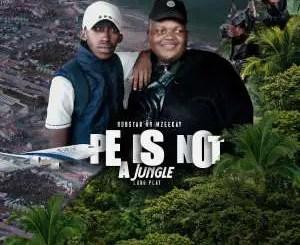 Bobstar no Mzeekay – PE Is Not A Jungle LP