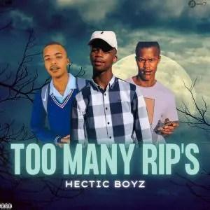 Hectic Boyz – Too Many RIP's