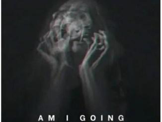 KingDonna – Am I Going Insane