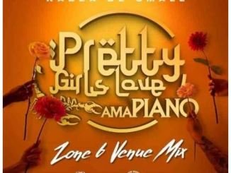 Felo Le Tee, Mellow & Sleazy – Bopha Ft. Kabza De small, Madumane & Young Stunna Download Mp3