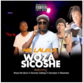 Mr Lalela – Wozasicoshe Ft. Woza We Mculi, Danman Da Slag, Cduraizer & Msamaria