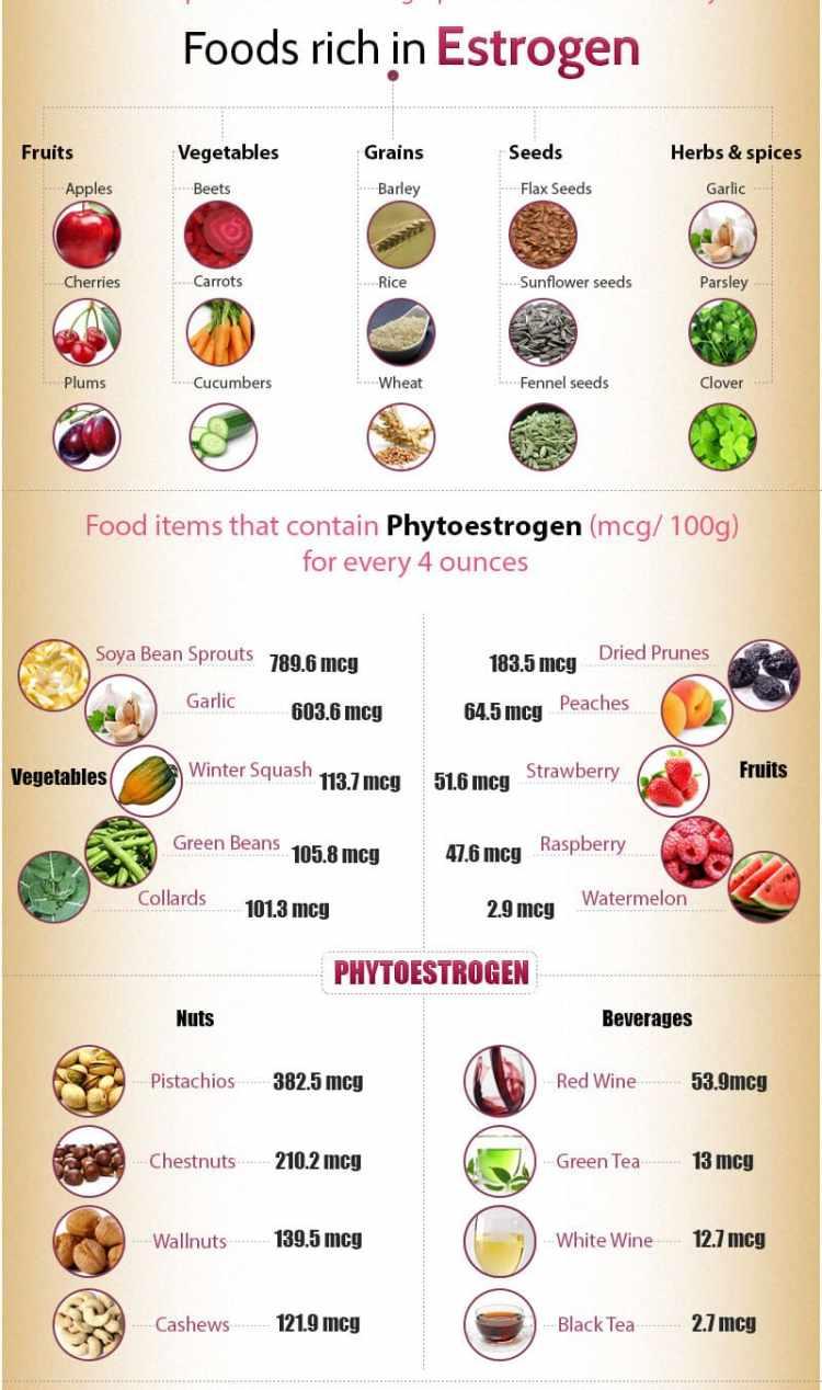 Foods For High Estrogen Levels