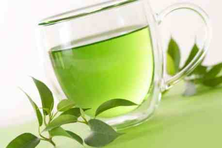 Green tea for hair