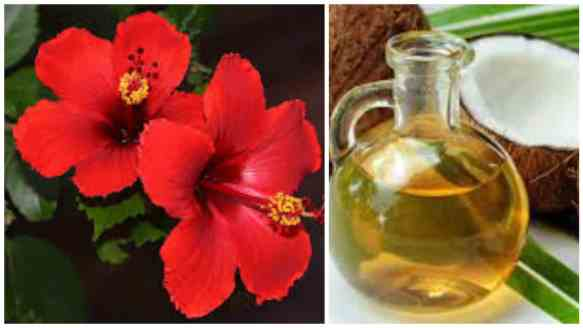 Hibiscus oil for hair growth