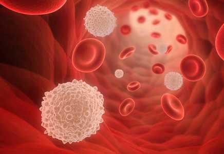 low lymphocytes