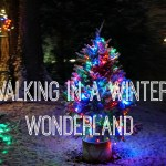 Winter Wonderland in PA