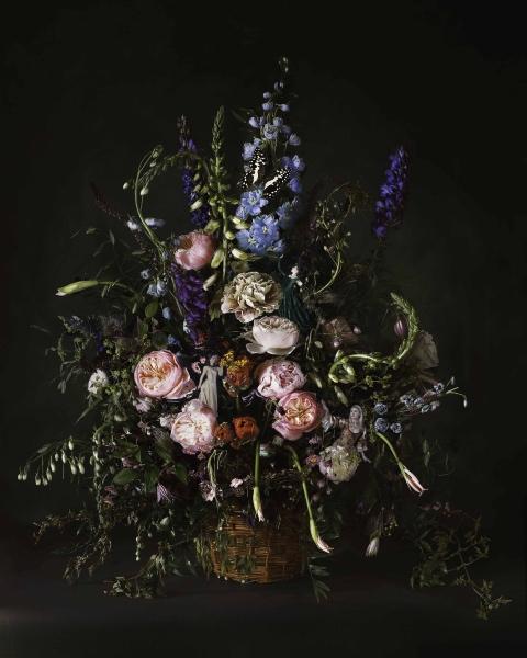 Renaissance Flowers, James Hall