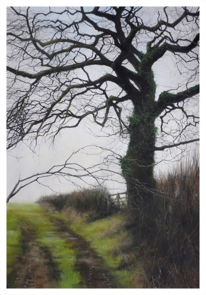 Moorland Tree, David Brammeld