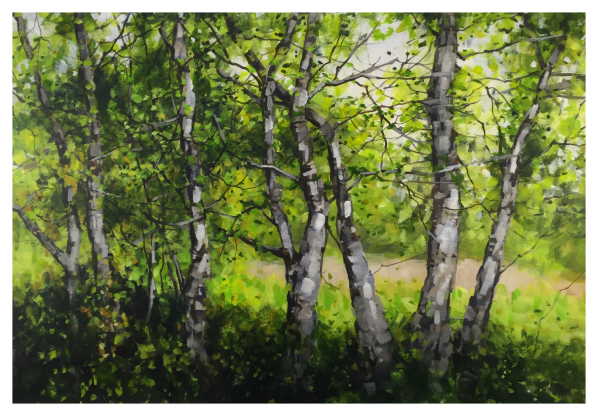 Brammeld, David ( ) Through the Trees - Trent Art