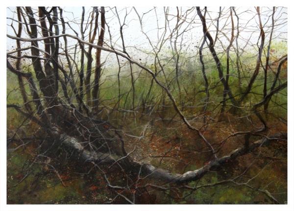 Brammeld, David RBA PS RBSA Pastelliste de France ( ) Through the Trees II - Trent Art