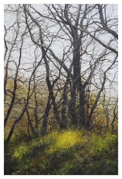 Brammeld, David RBA PS RBSA Pastelliste de France ( ) Deep in the Wood - Trent Art