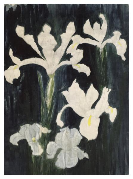 Maurice Wase Irises (Study For)