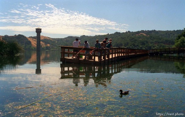 People fishing on dock and duck at the Lafayette Reservoir