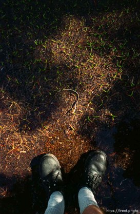 Trent feet and new spring growth on solo hike to Sword Lake