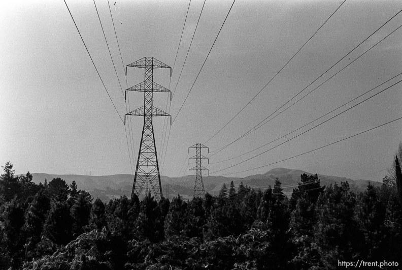 Power lines over christmas tree farm. San Ramon project