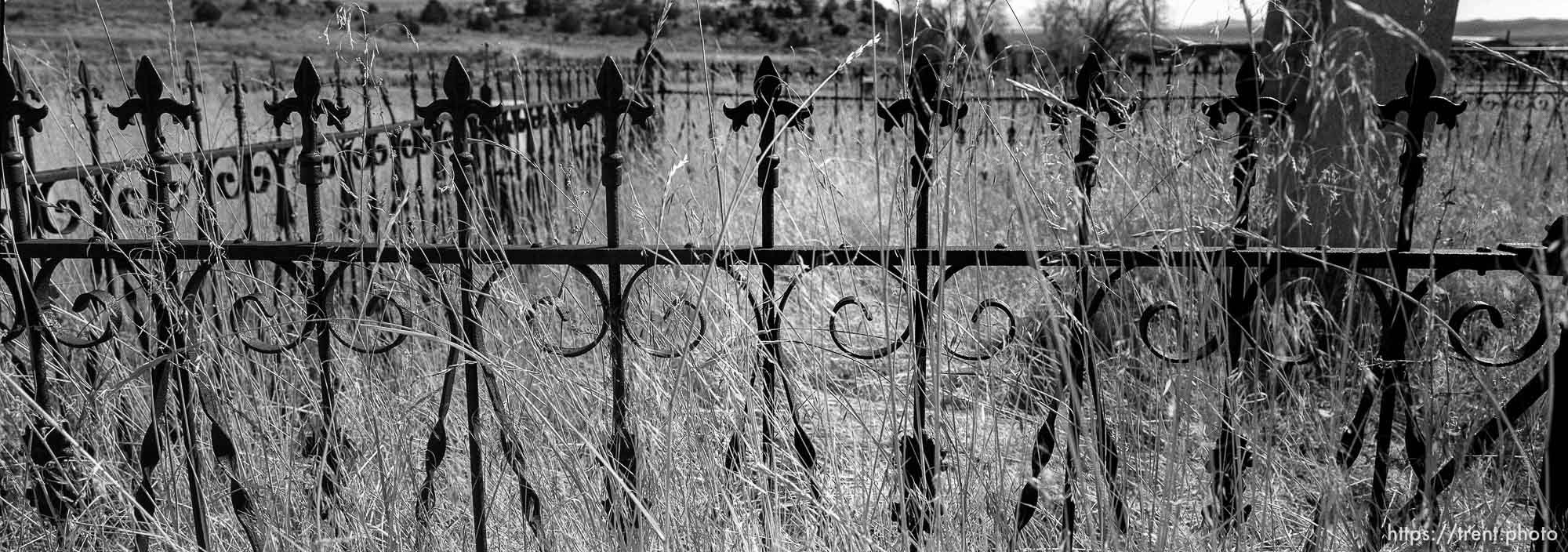 Iron fence in Eureka graveyard