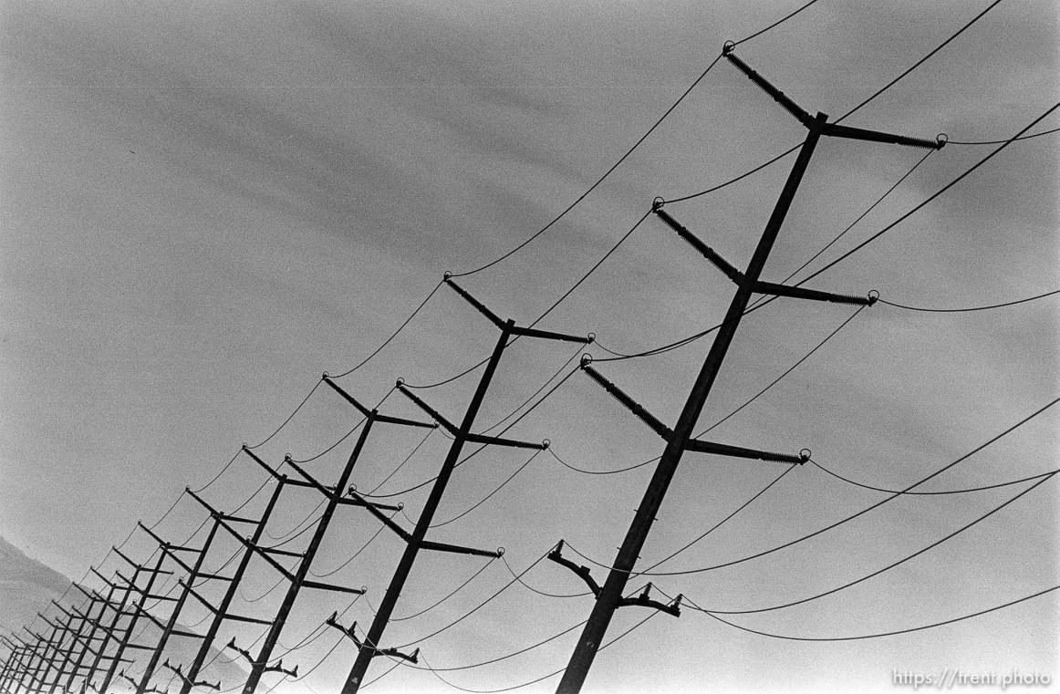 Powerlines along San Ramon Creek