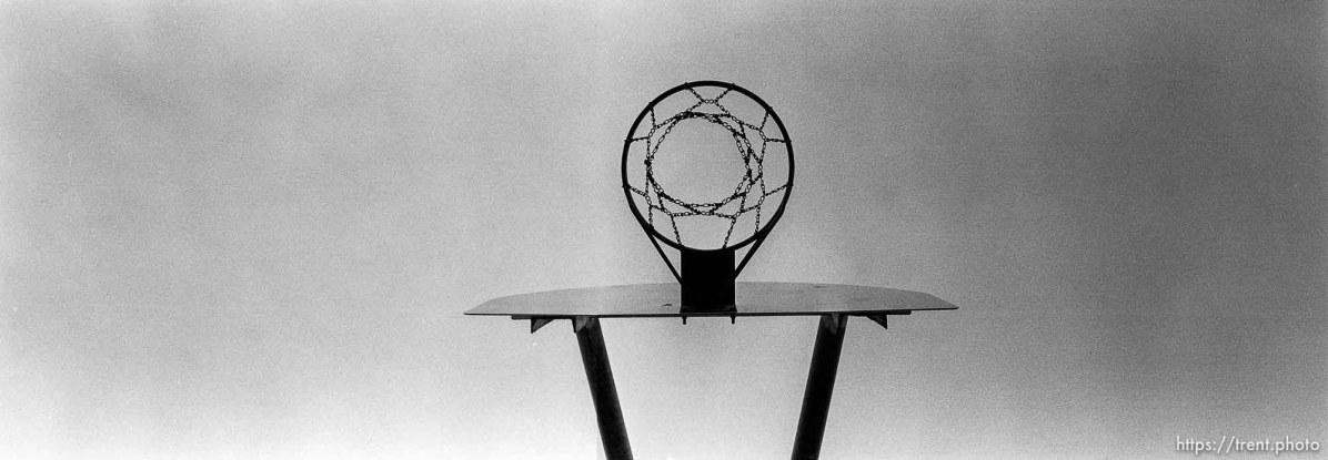 Basketball hoop at Walt Disney Elementary School.