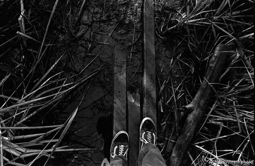 Trent feet and planks over water in canyon where we used to hike and play.