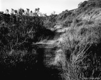 Trail in canyons I used to play in