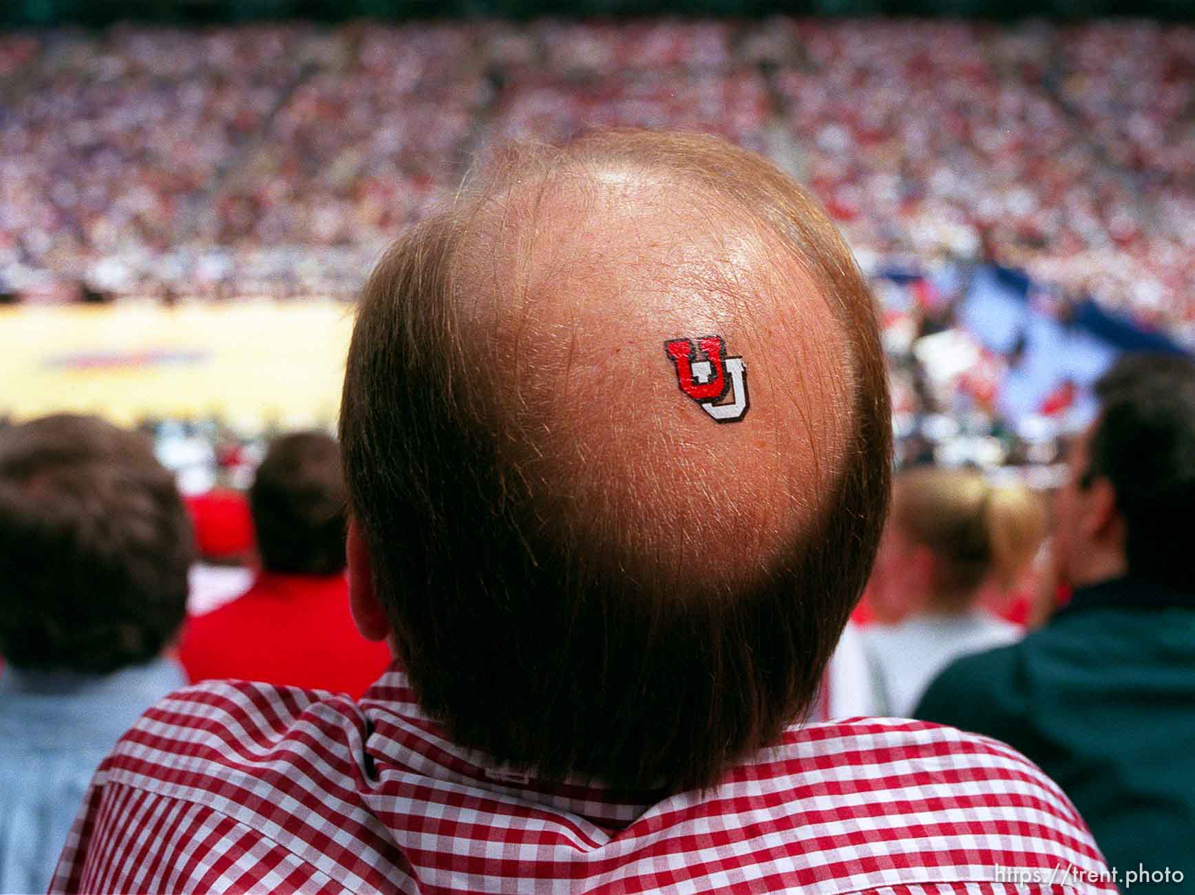 """Utah fan Dave Nelson with """"U"""" on his bald spot at the Final Four."""