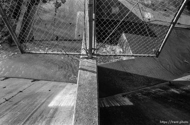 Chain link fence and concrete waterway in San Ramon Creek.