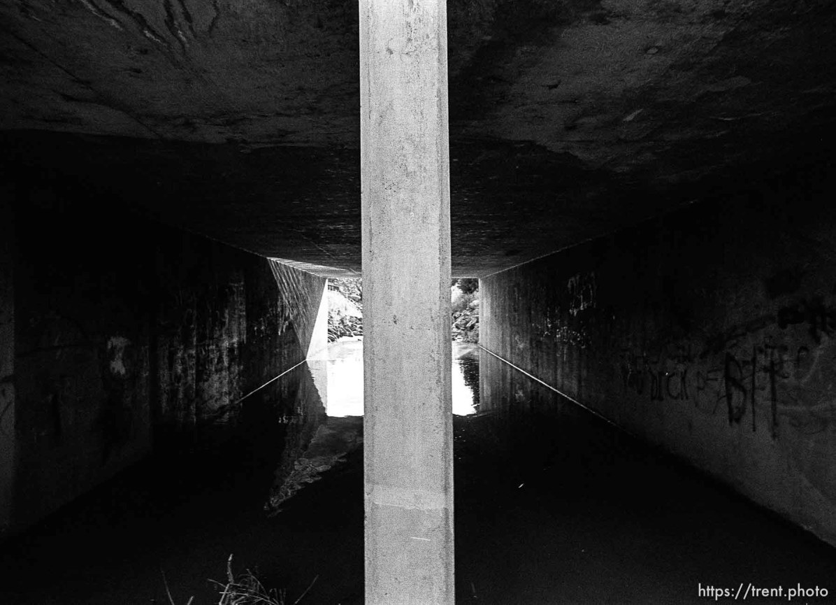 Tunnel in the creek.