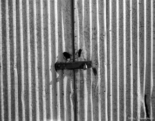 Metal shed and padlock
